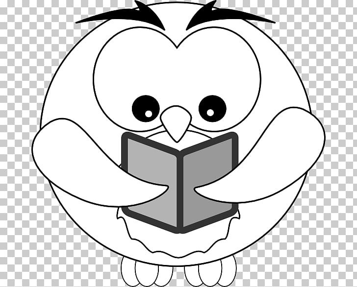 Owl Drawing Outline , all kinds of owls PNG clipart.