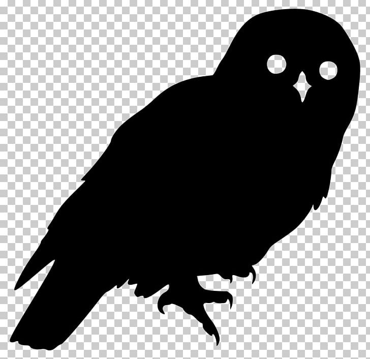 Barred Owl Silhouette PNG, Clipart, Animals, Barred Owl.