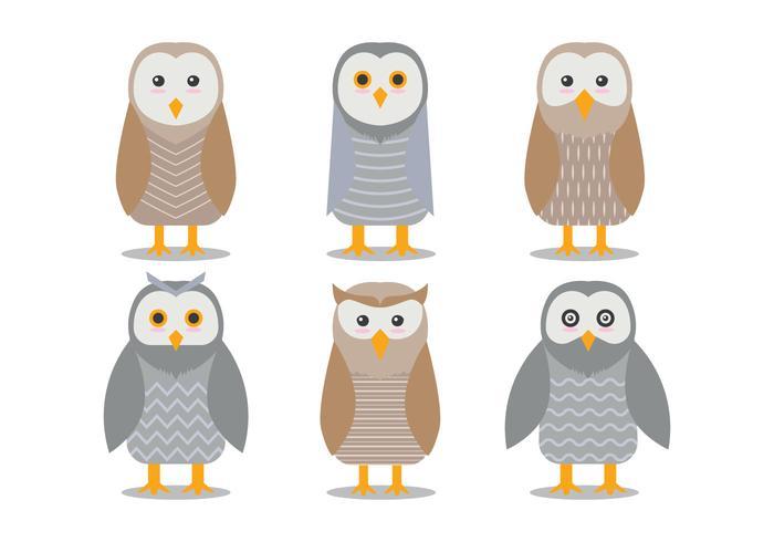 Barn Owl Vectors.