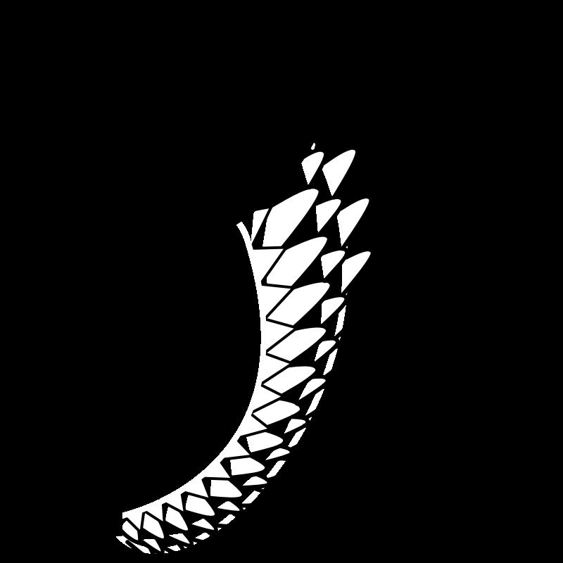 Bird Owl Wing Clip art.