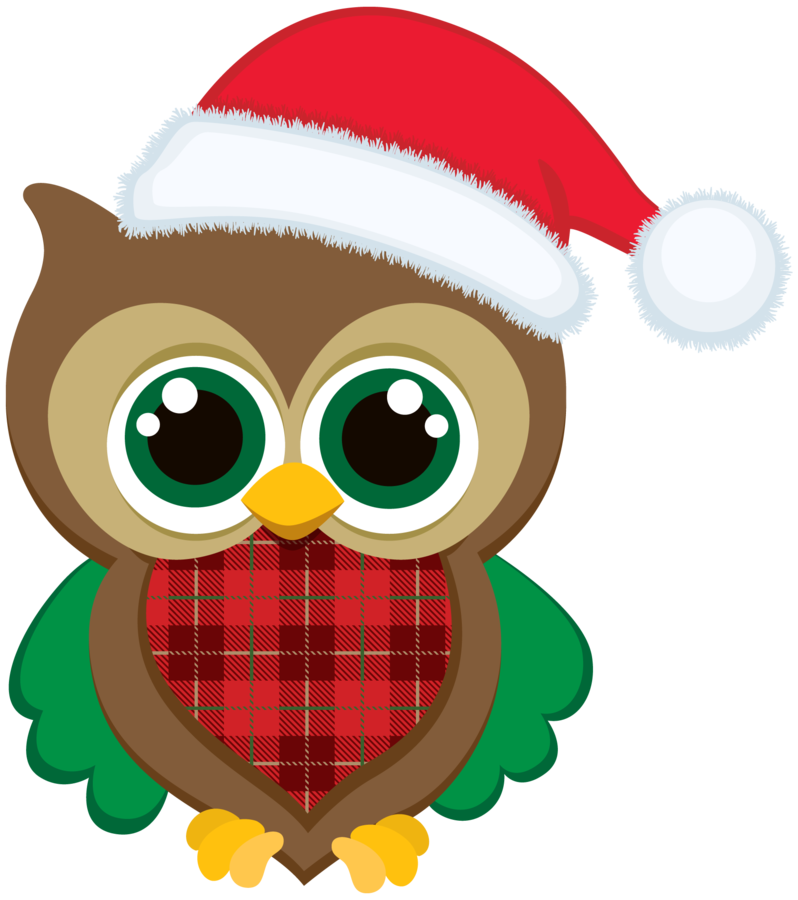 Winter clipart owl, Winter owl Transparent FREE for download.