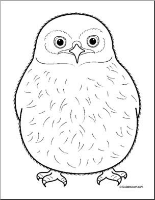 Clip Art: Baby Animals: Owl Owlet (coloring page).