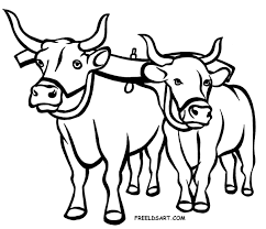Image result for black and white clip art of an ox.