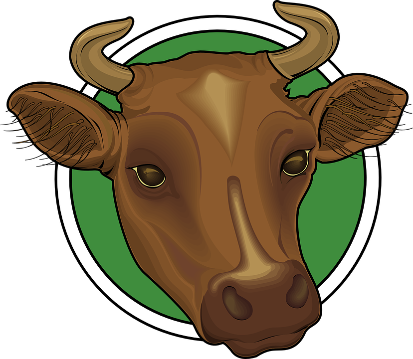 Free vector graphic: Head, Brown, Cow, Horns, Animal.