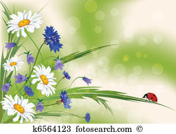 Ox eye daisy Clipart Royalty Free. 88 ox eye daisy clip art vector.