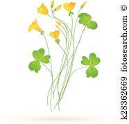 Oxalis Clipart Royalty Free. 12 oxalis clip art vector EPS.