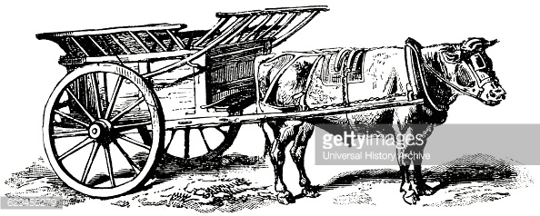 Ox Animal Cart Transportation Pictures.