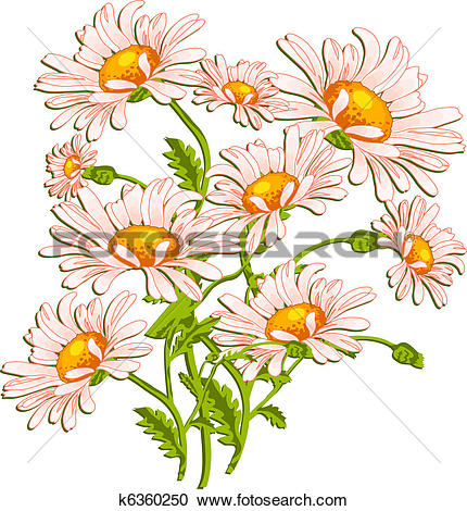 Clipart of Bouquet of ox.