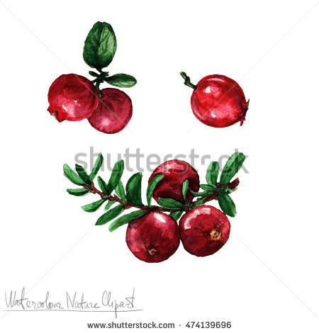 Cranberry Stock Images, Royalty.