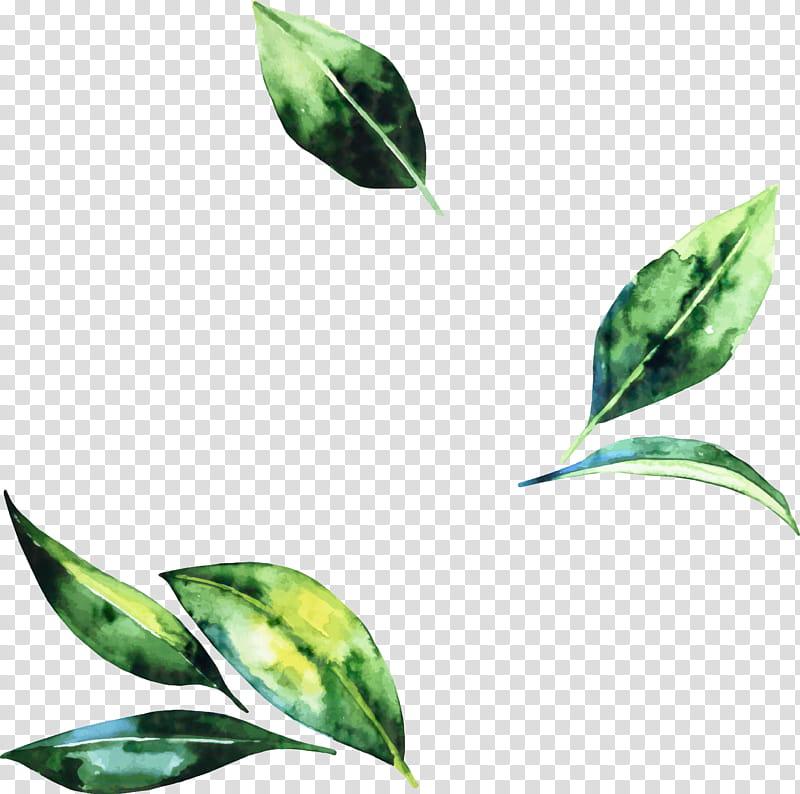 S, Psalms, Leaf, Jehovah, Plant Stem, Tag, Management.
