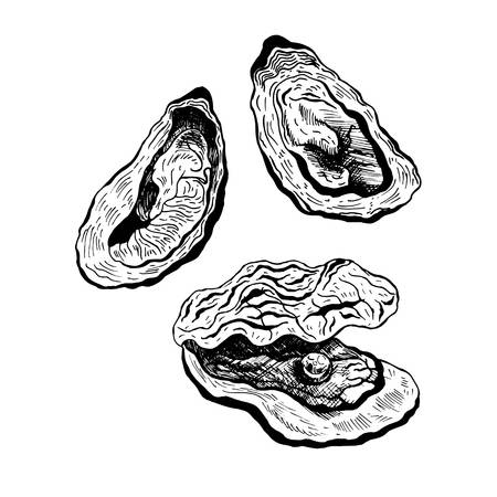 Oyster clipart black and white 1 » Clipart Station.