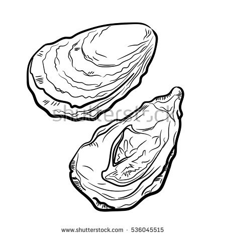 Oyster clipart hand drawn.