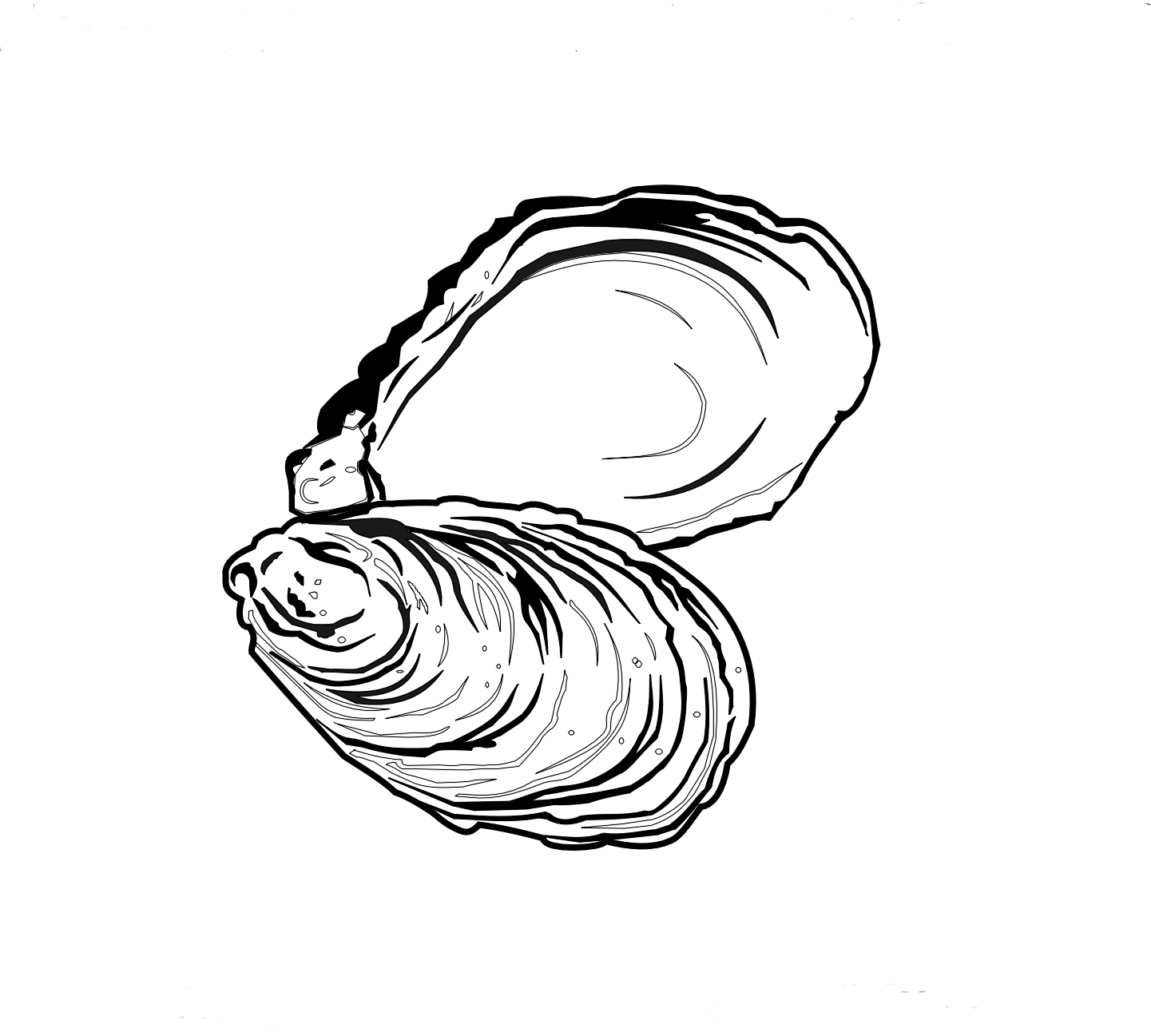 oyster clipart black and white #8