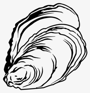 Free Oyster Clip Art with No Background.