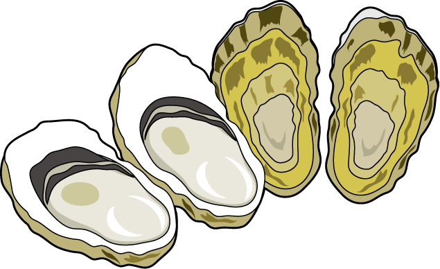 Free Oyster Cliparts, Download Free Clip Art, Free Clip Art.