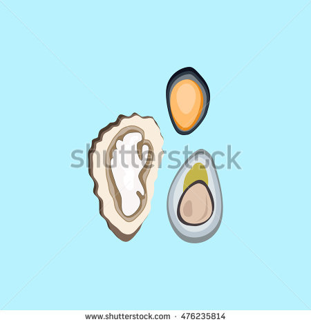 "flat Oyster"" Stock Photos, Royalty."