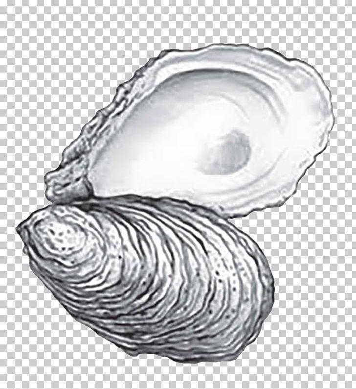 Eastern Oyster Cape Fear CREW: 2018 Annual Oyster Roast.