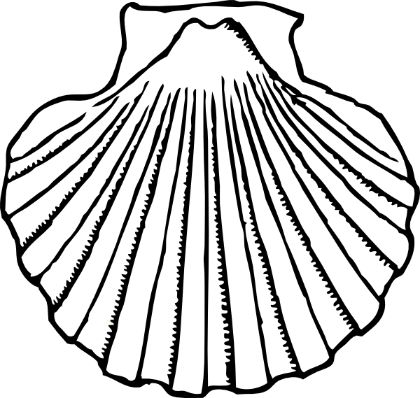 Oyster Shell Clip Art Shell.