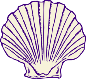 Oyster shell clip art.
