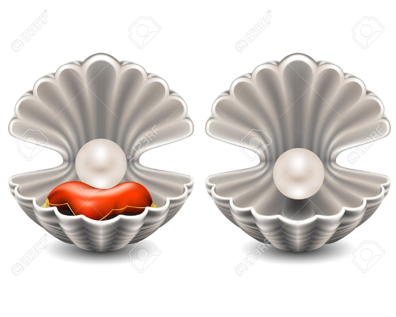 2,196 Oyster Shell Stock Vector Illustration And Royalty Free.