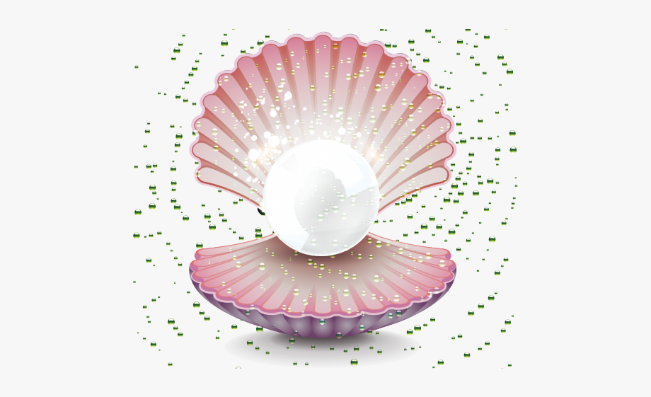 Clams Clipart Pearl Drawing.