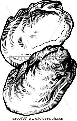 Stock Illustration of A black and white drawing of an oyster.