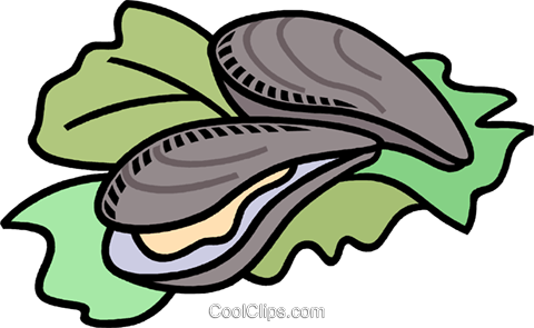 oysters Royalty Free Vector Clip Art illustration.