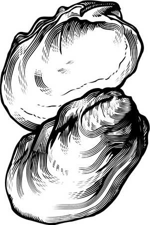 Similiar Oyster Clip Art Black And White Keywords.