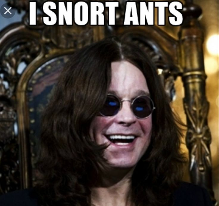17 best ideas about Ozzy Osbourne Bat on Pinterest.