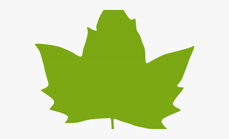 Leaf Clip Art Paan.