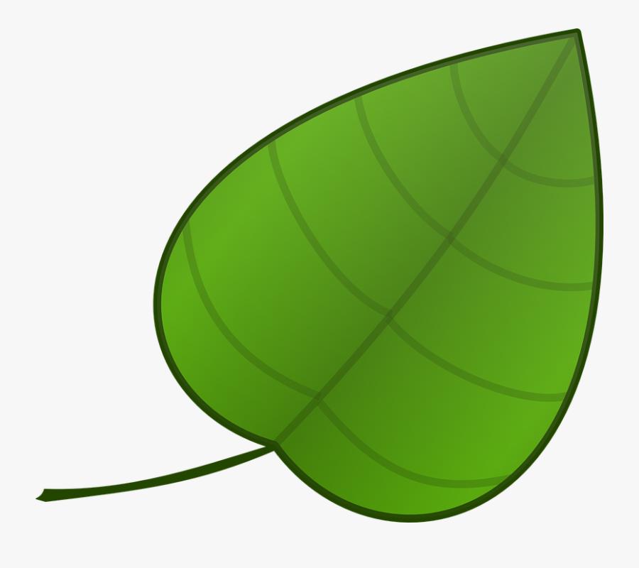 Paan Leaf Clip Art , Free Transparent Clipart.