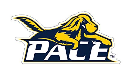 Pace University Setters Auto Badge Decal, Hard Thin Plastic, Small 3 x 1.6  inches.