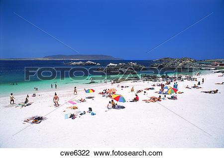 Stock Photo of Sunbathers on white sandy beach at Bahia Inglesa.