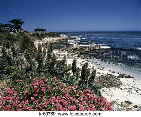 Stock Photograph of Pacific Grove Ca kr60769.