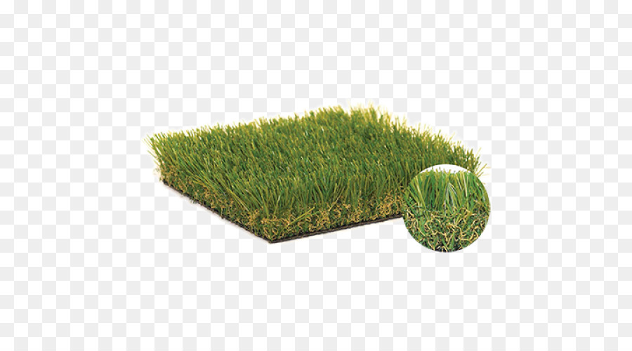 Grass Cartoon png download.