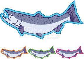 Pacific Salmon Icons Different Colors stock vectors.