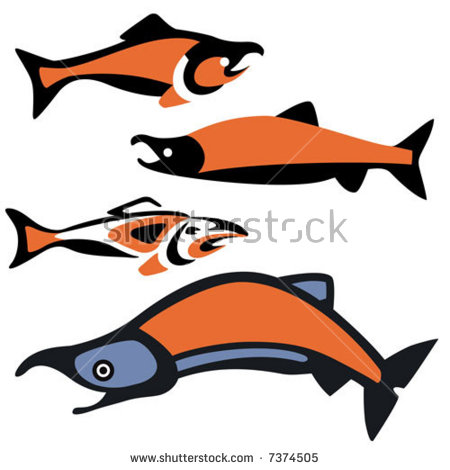 Pacific Salmon Swimming Stock Photos, Royalty.