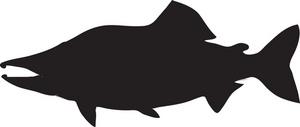 Salmon Fish Clip Art.