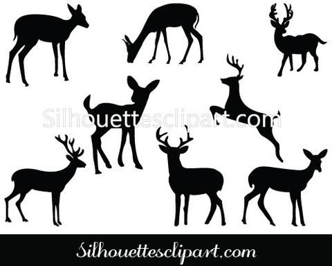 1000+ images about ANIMAL VECTOR GRAPHICS on Pinterest.