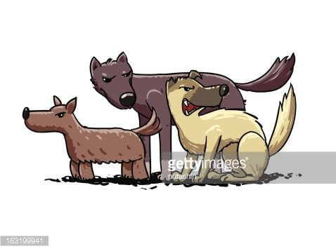 street dogs pack. vector illustration Clipart Image.