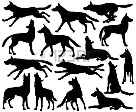 402 Pack Of Wolves Stock Vector Illustration And Royalty Free Pack.