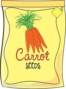 Clip Art of a Packet of Carrot Seeds.