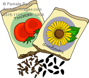 Clip Art Image of Tomato and Sunflower Seed Packets.