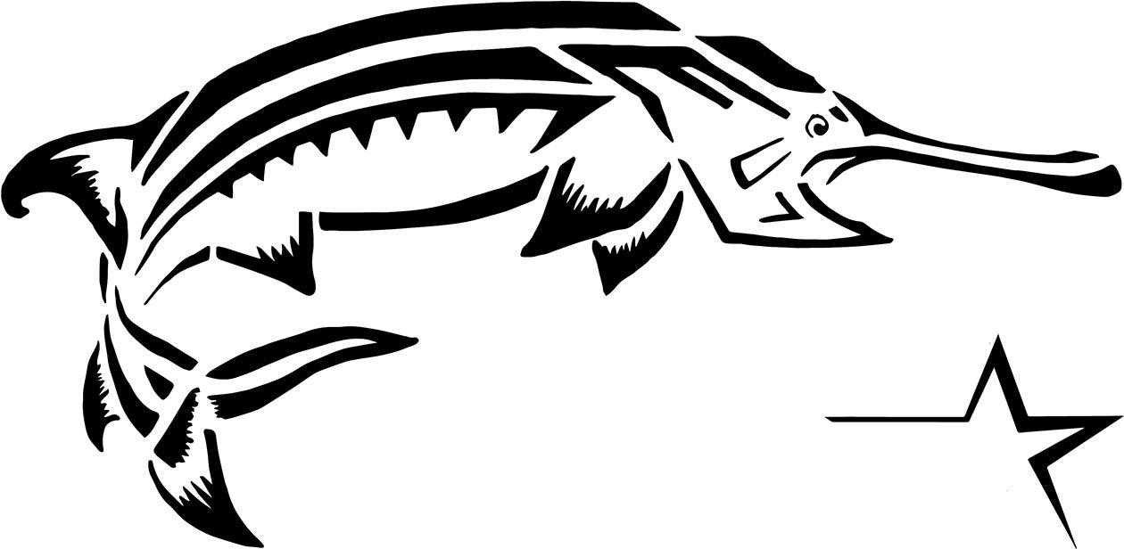 American Paddlefish.