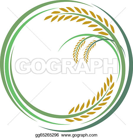 Rice Field Background Clip Art.