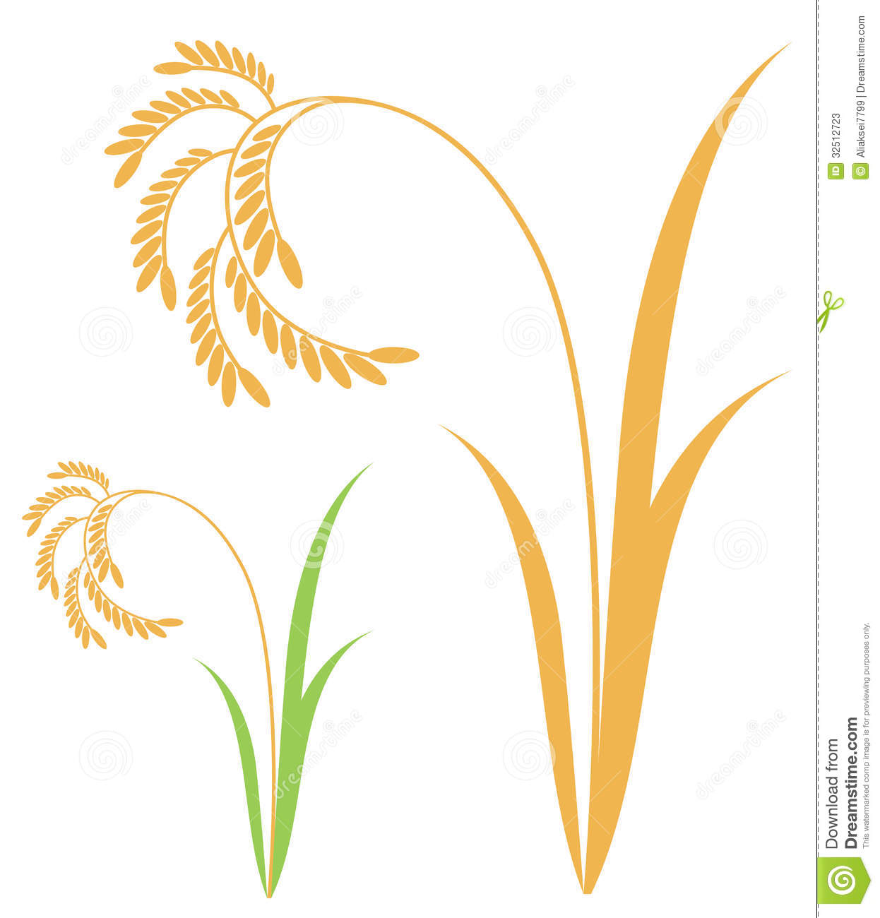 Paddy clipart - Clipground