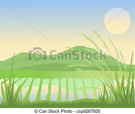 Paddy Illustrations and Clip Art. 1,539 Paddy royalty free.