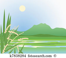 Paddy field Clip Art Illustrations. 177 paddy field clipart EPS.