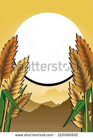 Paddy Field Stock Vectors, Images & Vector Art.