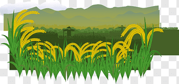 Countryside cutout PNG & clipart images.